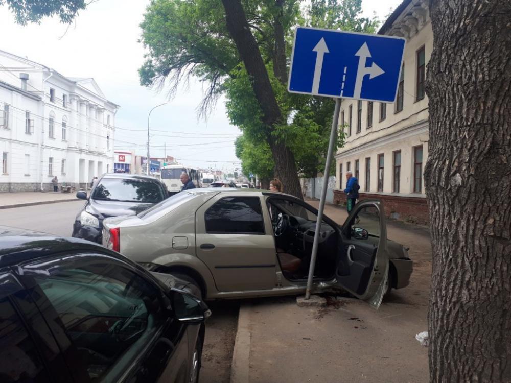 Бездомный пёс спровоцировал серьезное ДТП в центре Тамбова
