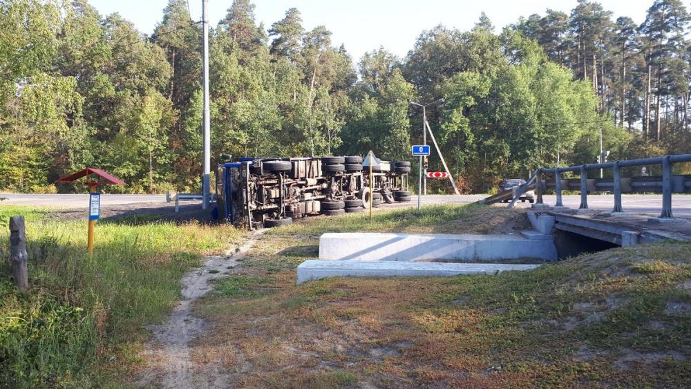 На трассе в Тамбовской области перевернулась фура