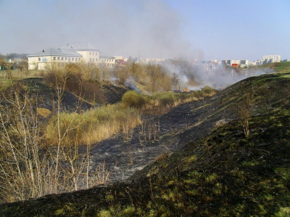 Сухой камыш загорелся в Ласковском карьере Тамбова