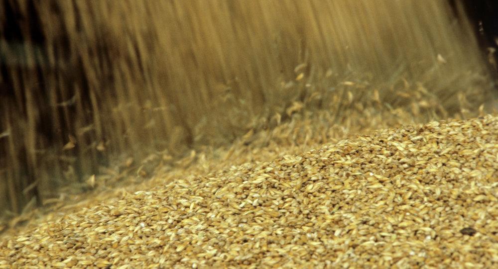 В индустриальном парке «Уварово» построят современнейший завод по переработке зерна на белковый концентрат