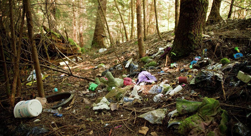 После майских пикников тамбовские леса превратились в свалку