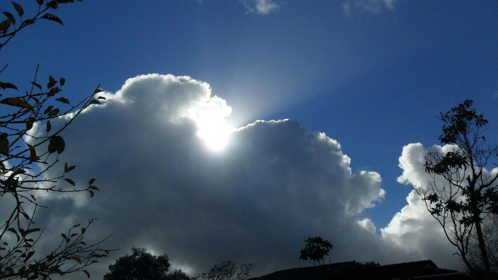 К пятнице в Тамбове соберутся дожди