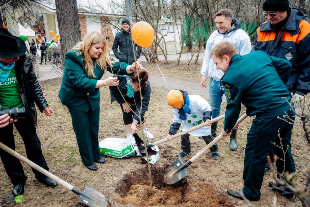 В сентябре в Тамбовской области пройдёт очередной экологический субботник