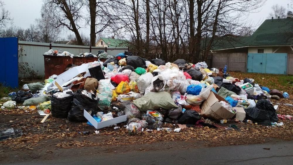 Проект экотехнопарка может решить проблему с мусором в регионе на десятки лет
