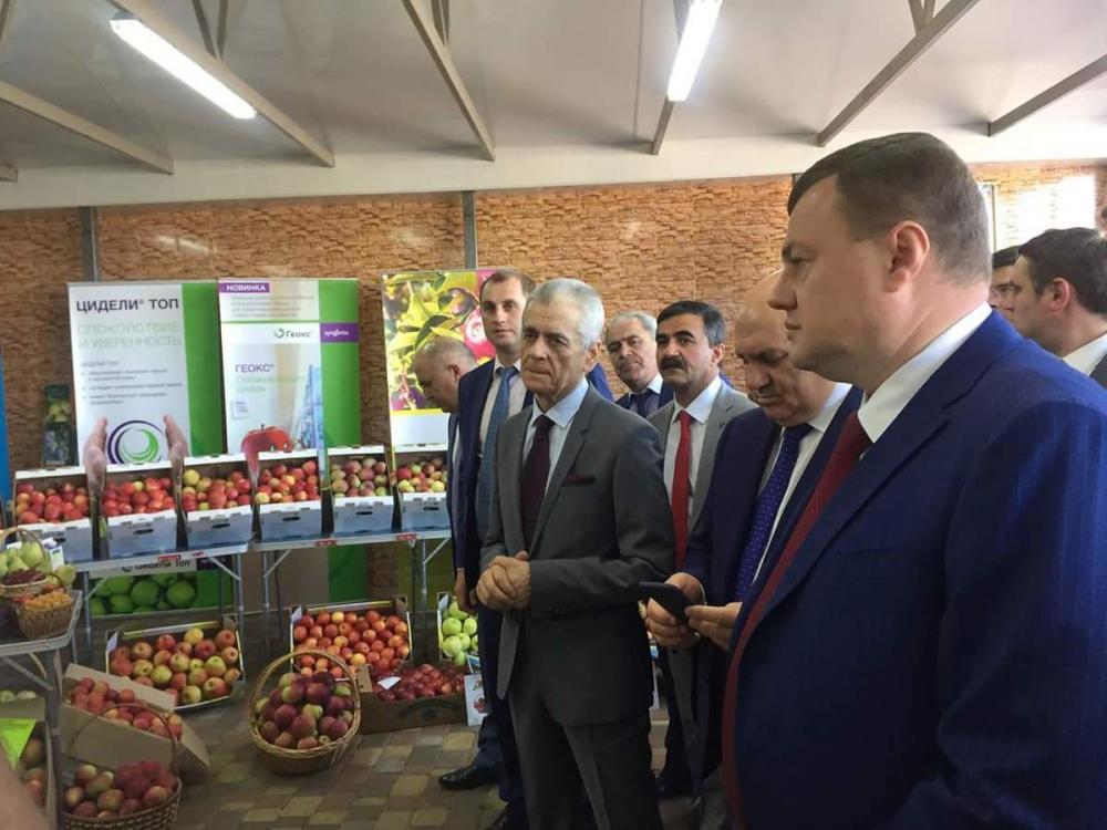 Александр Никитин открыл День садовода в Мичуринске