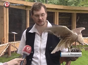«Крылья Наукограда» примут на  реабилитацию хищных птиц