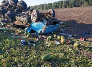 Уснувший за рулем водитель столкнулся с «арбузной» фурой под Мичуринском