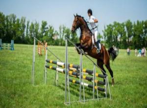 «Газпром» хочет построить в Тамбове конно-спортивную школу