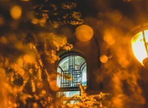 Рождественское чудо продемонстрируют тамбовчанам в «Усадьбе Асеева»