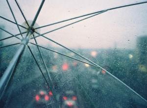 Бабье лето вернется: дожди будут идти всего два дня