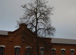 Ремонт крыши «Кирсановской ЦРБ» почти окончен