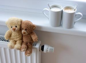 Отопление в квартиры Тамбова должны подать до 8 октября