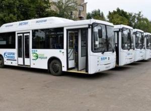 Участникам акции «Свеча памяти» подадут автобусы