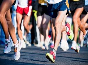 Число желающий участвовать в мичуринском пробеге превысило лимит