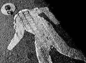 Неизвестный тамбовчанин погиб под колесами «Жигулей»