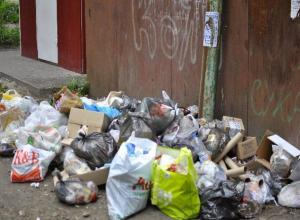 «Легче кота к лотку приучить, чем моих соседей - выбрасывать мусор в контейнер!»