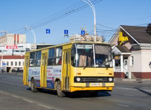 Автобусы в праздники изменят маршруты