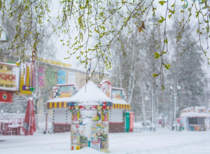 «Крепитесь, люди, скоро…!» Весенняя погода в Тамбов придёт уже через неделю