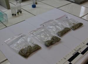 «Закладки» с наркотиками обнаружили полицейские в Тамбове