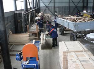 На базе тамбовских лесхозов откроется 3 новых цеха деревообработки