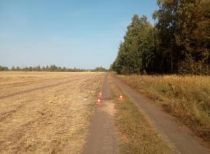 Труп мужчины обнаружен на проселочной дороге в Первомайском районе