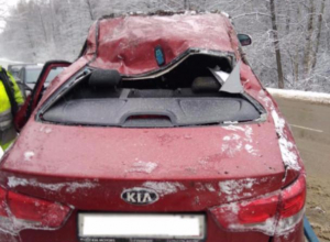 Красная иномарка улетела в кювет на трассе с 10-летним ребёнком на борту