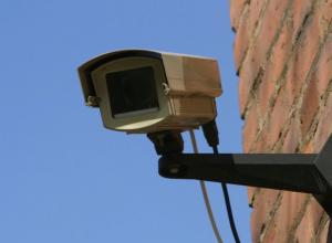 Воришку 5-и  кг грецких орехов помогли поймать камеры видеонаблюдения