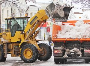 Больше ста деревьев повалил снегопад в Мичуринске