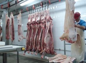 Без медкнижек оформляли сотрудников на мясоперерабатывающем предприятии в Никифоровке