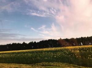 «Байдарки, палатки, купание, песни у костра»: ТОП-9 лучших «походных» мест области