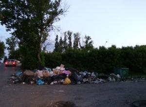 Остро стоит в Тамбове проблема вывоза мусора с территорий дачных товариществ