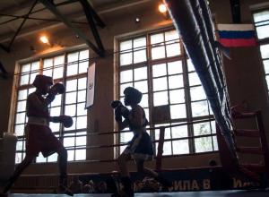 Через 5 дней станет известно имя лучшего боксёра Тамбовской области