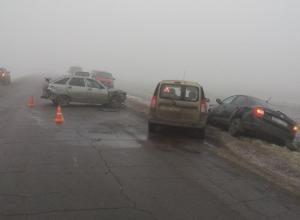«Урожай» из семи машин собрал утренний туман под Мичуринском