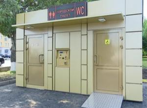 Площадь Славы в Мичуринске украсит золотой высокотехнологичный туалет будущего