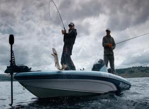 Тамбовские спортсмены пообещали выловить самую крупную рыбу