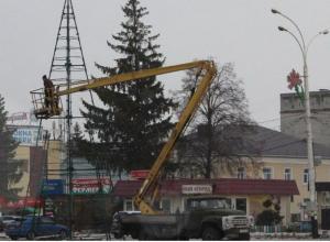 Новогодние ёлки вырастают на главных площадях городов области