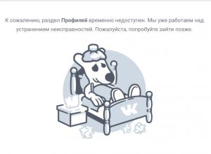 Тамбовчане остались без ВКонтакта