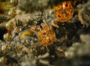 Накануне фабриканты Асеевы дали бал-маскарад в честь нового года