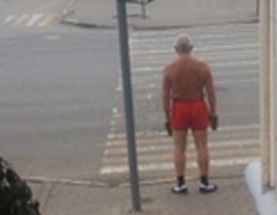 На улицах Тамбова замечен морж