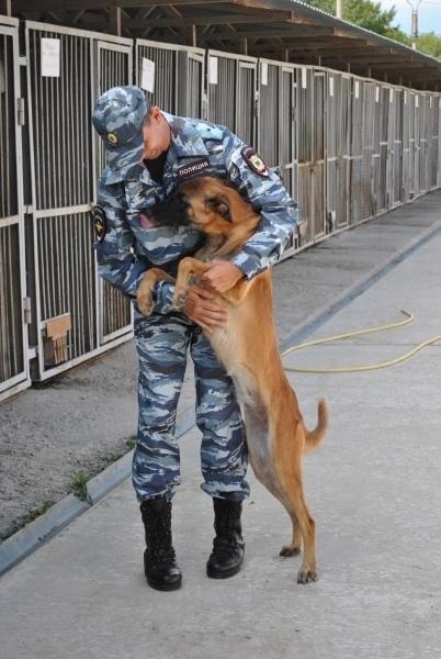 Любимая собака помогла майору полиции стать лучшим в своей профессии