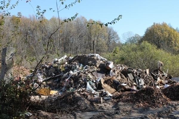 Лес и реку у села Большая Липовица захламили бытовым и строительным мусором