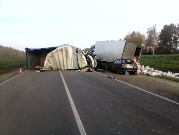 Два грузовика столкнулись на трассе Р-22 в Жердевском районе: есть погибшие