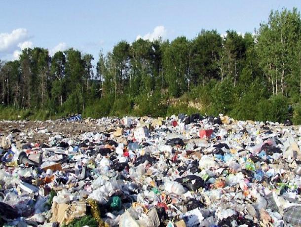 Мичуринский мусор повезут в Дмитриевку и Тамбов
