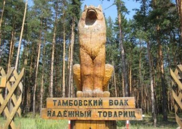 Тамбовские волки и мичуринские яблочные консервы поборются за звание лучших сувениров России