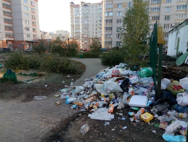 Читатели портала «Блокнот» рассказали о мичуринском «феномене чистоты» и тамбовских свалках