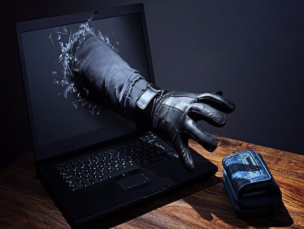 Трое тамбовчан попались на уловки кибер-мошенников