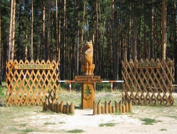В Тамбове в очередной раз предложили установить памятник волку