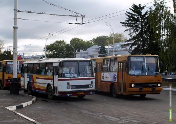 Тамбовские инспекторы дорожного движения решили провести операцию «Автобус»