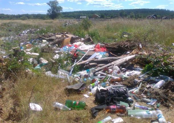 Свалка мусора в Знаменском районе будет ликвидирована по решению суда