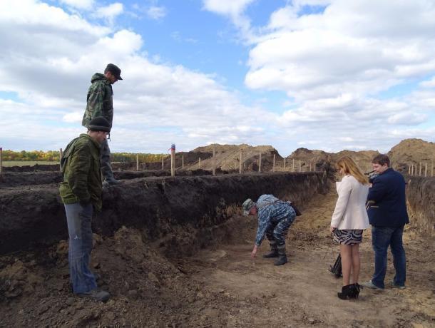 На раскопках в Котовске найдено уже 20 древних скелетов